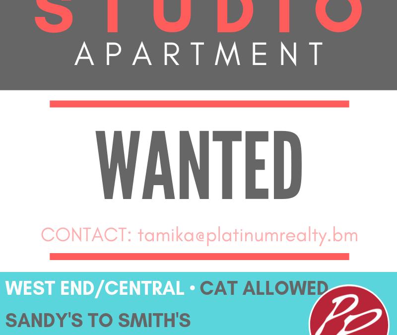 Studio Wanted
